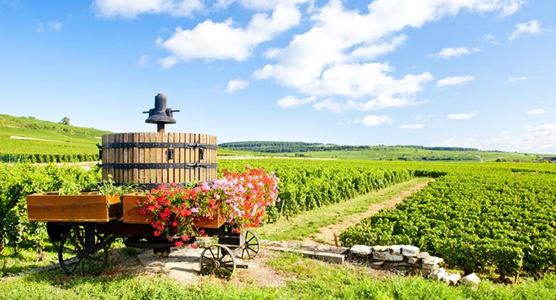 loire-valley-wine