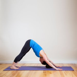 stretching position : the downward facing dog