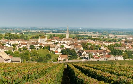 Meursault village